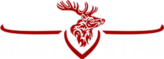 Digital Marketing Agency – Ruby Stag